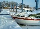 Hafenbilder Februar 2010